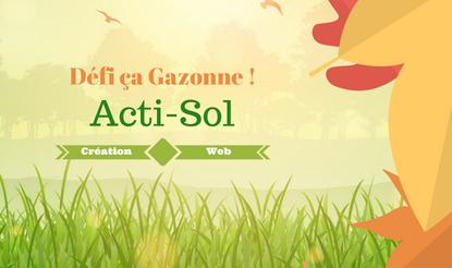 Acti-Sol