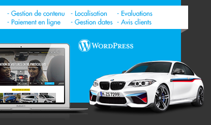 expert wordpress optimisation seo site web